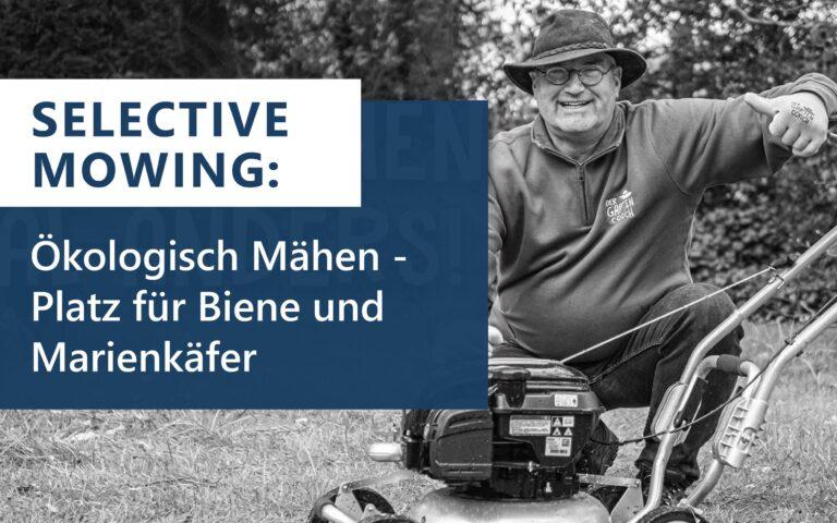 """Read more about the article """"Selective mowing"""": Ökologisch Mähen – Platz für Biene und Marienkäfer"""